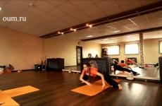 Хатха йога для начинающих и не только:)  Е. Андросова