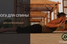 Йога для начинающих | Йога для спины и позвоночника | Упражнения для спины | Комплекс йоги