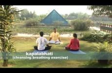 Шивананда Йога — Хатха Йога. Базовый класс (ассана пранаяма, релаксация) ч.1