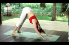 Йога для мужчин видео уроки для начинающих