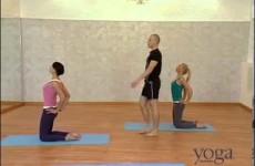 Прогибы — Yoga Journal