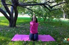 Растяжка плеч и упражнение для гибкости спины!