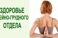 Упражнения для шеи и грудного отдела позвоночника. Йога и система оздоровления Yogalife
