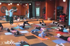 Universal Yoga   Andrey Lappa   Mandala Vinyasa Yoga   Yoga at Home