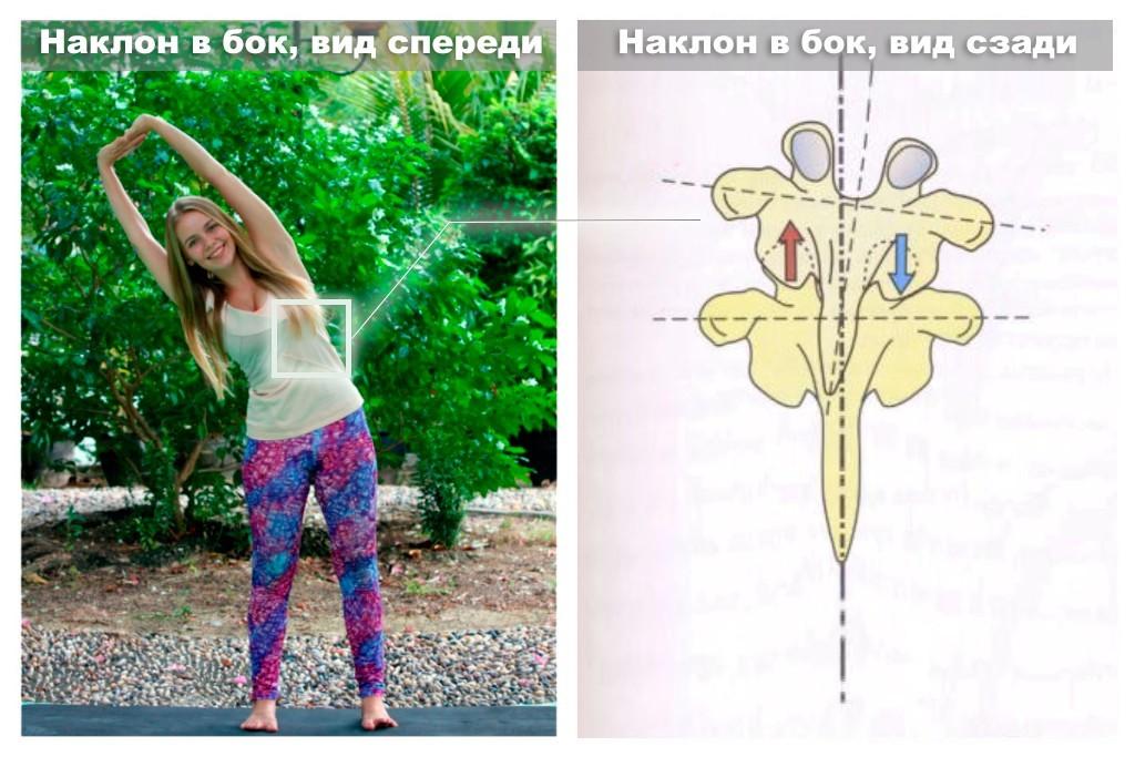 наклон корпуса в бок йога