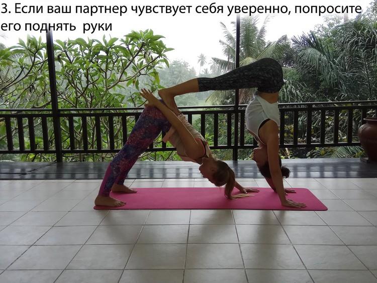 2 (2)_sobaka_vniz_3
