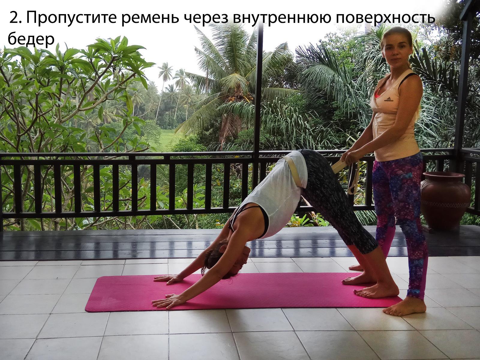 2_sobaka_mordoi_vniz
